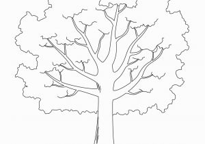 Leafless Tree Coloring Page Tree Printable Template Elitasushi