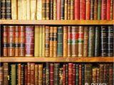 Library Book Wallpaper Mural Libros Antiguos Librera Biblioteca Wall Mural • Pixers • We Live