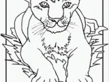Lion Head Coloring Pages Lion Cub Coloring Page Coloring Page Free the Lion King