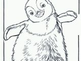 Little Blue Penguin Coloring Page 22 Penguin Coloring Pages