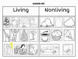 Living and Nonliving Things Coloring Pages 128 Best School Images On Pinterest