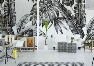 Living Room Wall Murals Uk Black and White Wall Murals and Photo Wallpapers Monochromatic