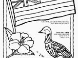 Luau themed Coloring Pages Flower Border Coloring Pages Luau themed Coloring Pages Fresh 0d