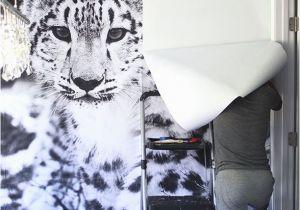 Make Wall Mural From Photo Snow Leopard Wallpaper Mural Diy