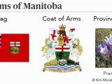 Manitoba Flag Coloring Page Manitoba