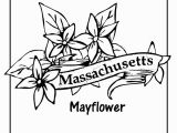 Massachusetts Flag Coloring Page Massachusetts Flag Coloring Page Awesome State Flower Coloring Pages