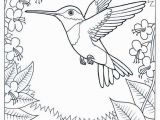 Meadowlark Coloring Page 29 Coloring Pages Birds