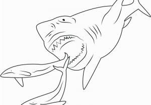Megalodon Coloring Pages to Print Megalodon Coloring Pages Coloring Pages Sharks Coloring Pages