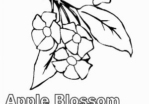 Michigan State Flower Coloring Page Michigan State Flower Coloring Page Awesome Kawaii Food Coloring