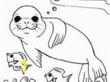 Michigan State Seal Coloring Page 12 En Iyi Monk Seal Colouring Pages Görüntüsü