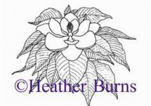 Mississippi Coloring Pages 49 Best State Flower Coloring Book Images