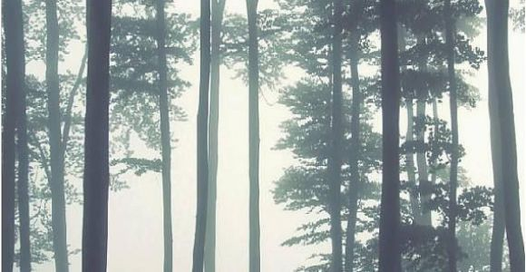 Misty forest Wall Mural Dreamy Foggy forest Scene Mural Misty forests Mural forest