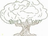 Mm Coloring Pages Unique Trees Coloring Sheet Gallery