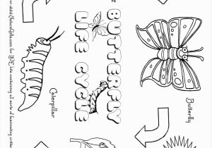 Monarch butterfly Coloring Page Free butterfly Coloring Pages butterfly Life Cycle