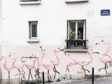 Montmartre Paris Wall Mural Flamingos Montmartre Paris France
