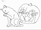 Morkie Coloring Pages Morkie Coloring Pages Dog Gallery Rare Dog Coloring Pages Lovely