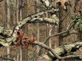 Mossy Oak Wall Mural 47 ] Camouflage Background Wallpaper On Wallpapersafari