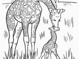 Mother and Baby Animal Coloring Pages Baby Giraffe Coloring Page Five In A Row Fiar