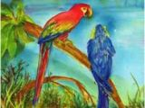 Murals Your Way.com Macaws Mural Joyce Backus Murals Your Way Sick Of Macaws