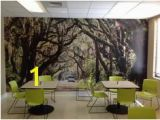 Murals Your Way Reviews 56 Best Myw Customer Examples Images