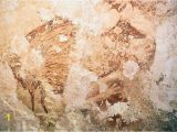 National Geographic Murals Rock Art Of Ages Indonesian Cave Paintings are 40 000 Years Old
