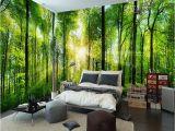 Nature Bedroom Wall Murals Doe Het Zelf Behang Gereedschap Access Green Shades