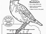 Nebraska State Flag Coloring Page Nebraska State Bird Ss Nebraska Pinterest