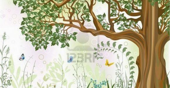 Oak Tree Wall Mural Vector Iillustration Of An Oak Tree In A Meadow