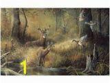 October Memories Wildlife Wall Mural 9 Best Shirley S Murals Images