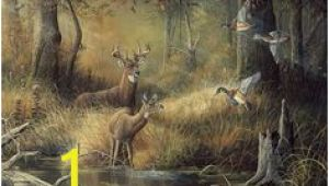 October Memories Wildlife Wall Mural 9 Best Shirley S Murals Images