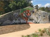 October Memories Wildlife Wall Mural World Animal Day