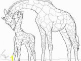 Okapi Coloring Page Print Coloring Page and Book Color Fox Animals Coloring P