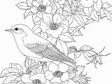 Online Spring Coloring Pages Coloring Pages Birds and Flowers