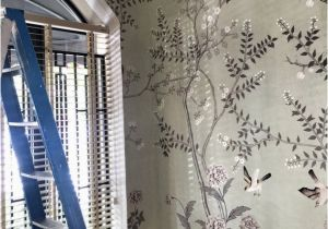 Oriental Wallpaper Murals Chinoiserie Wallpaper oriental Trees Flowering Branch Exotic Birds