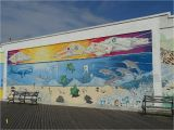 Outdoor Beach Wall Murals Aktuelle Informationen Zu Coney island Brooklyn Aktuelle