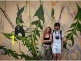 Outdoor Wall Murals Posters Mona Caron