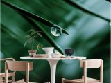 Outdoor Wall Murals Wallpaper Raindrops On A Pine Needle Wall Mural Wallpaper Nature