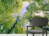 Outdoor Wall Murals Wallpaper Sun Breaking Treetops forest Square Wall Murals