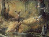 Outdoor Wildlife Wall Murals 44 ] Wallpaper Murals Winter Scenes On Wallpapersafari