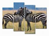 Outdoor Wildlife Wall Murals Amazon 4 Panels Canvas Painting Wall Art Animal Zebra