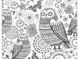 Owl Color Pages for Adults Owls Owls Adult Coloring Pages