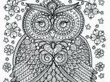 Owl Color Pages for Adults Pin by Rachel Burgener On Coloring Collections