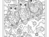 Owl Color Pages for Adults Pin by Sylvia Kolb On Printables and Coloring Pages
