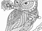 Owl Color Pages for Adults Pin Von Anne Bölter Auf Ausmalbilder