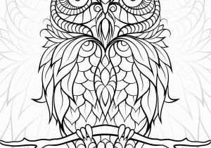 Owl Coloring Pages for Adults to Print Diceowl Free Printable Adult Coloring Pages