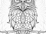 Owl Coloring Pages to Print for Adults Free Printable Owl Coloring Pages for Adults Gallery