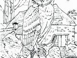 Owl Coloring Pages to Print for Adults Great Horned Owl Colouring Page Owls Coloring Pages to Her with