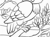 Owl In A Tree Coloring Page Coloring Pages Birds Cute Owl Sits the Tree Royalty Free
