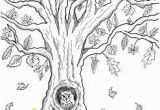 Owl In A Tree Coloring Page Free Printable Autumn Owl Tree Coloring Page In 2018