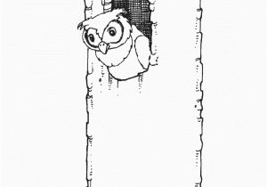 Owl In A Tree Coloring Page Owl In Tree Coloring Page Free Owl Coloring Pages
